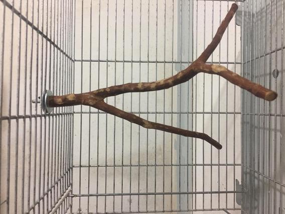 2 Poleiros Naturais 45cm