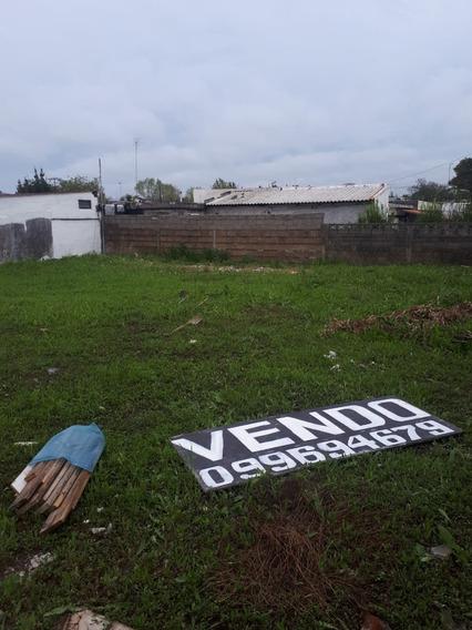 Terreno En Colon - Conciliacion. Ofertas Concretas