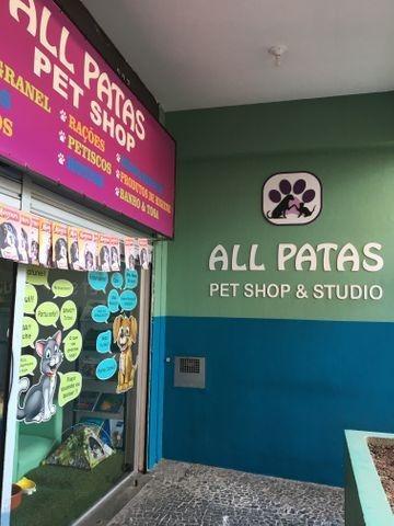 Pet Shop - Passo O Ponto Grátis