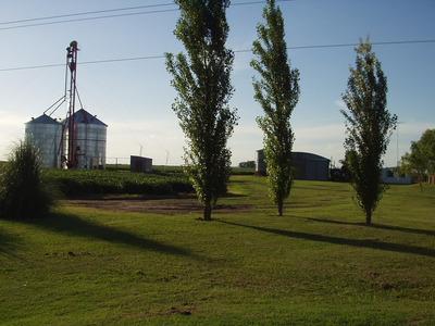 Campo Agricola En Zona Especial Con Casa, Silo Y Galpon