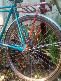 Bicicleta Bufalo