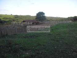 2875 Hectareas En Tacuarembó Por Hectarea