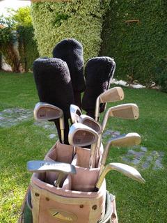 Set Palos De Golf Dunlop Foremost 551