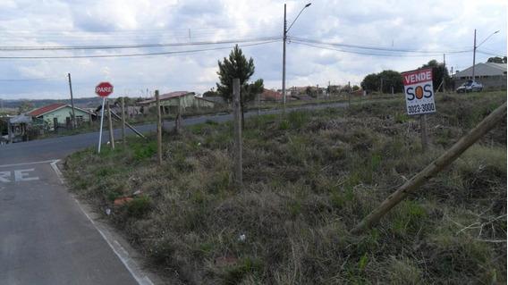 Terreno Para Venda Em Araucária, Iguacu - 4770080078 Dona Rosa