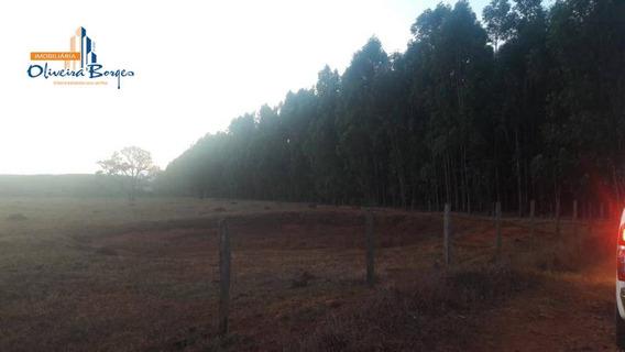 Chácara À Venda, Rural, Campo Limpo. - Ch0029