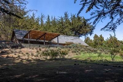 Entre Punta De Lobos Y Pichilemu
