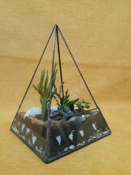 Terrario Piramide Cuadrangular