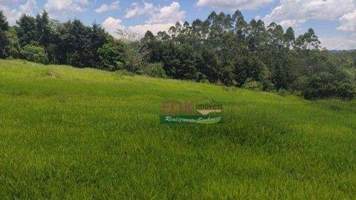 Imagem 1 de 11 de Terreno À Venda, 24500 M² Por R$ 300.000 - Centro - Biritiba-mirim/sp - Te3426