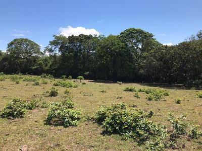 Finca De 84,57 Tareas En Venta Piedra Blanca, Jarabacoa.