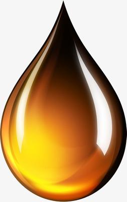 Biodiesel Renov