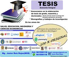 Tesis - Asesoría Integral