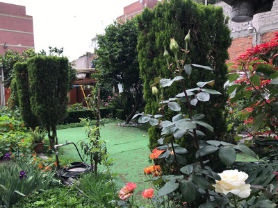 Preciosa Casa Con Jardin*1055metros Para Inversionistas