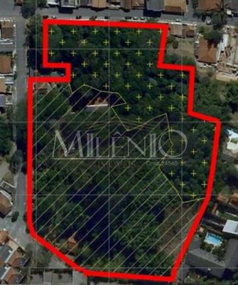 Terreno - Centro - Ref: 19184 - V-te0287
