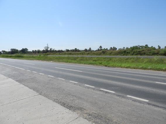 Vendo 35 Hectáreas Sobre Asfalto Ruta 11 ( Formosa Capital )