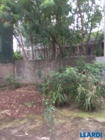 Galpão - Vila Mascote - Sp - 483230
