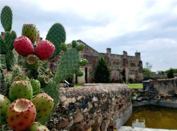 Ex Hacienda En Venta San Antonio Calichar Apaseo El Alto Guanajuato Rrv200709-ae