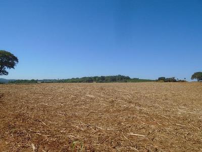 Fazenda De Cana, 498,52 Hectares, 206 Alqueires Mecanizado Na Região Itamogi, Permuta Maior Valor - Fa0018