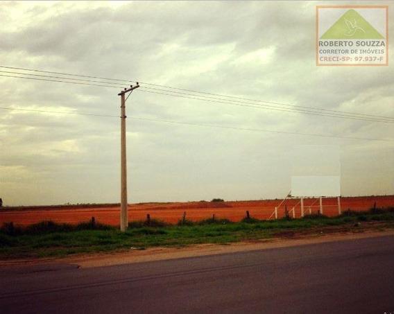 Área Industrial Para Venda Em Caçapava, Jardim Campo Grande - 00497