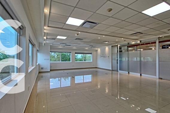 Oficina En Renta En Cancun En Edificio Best Day En Pb