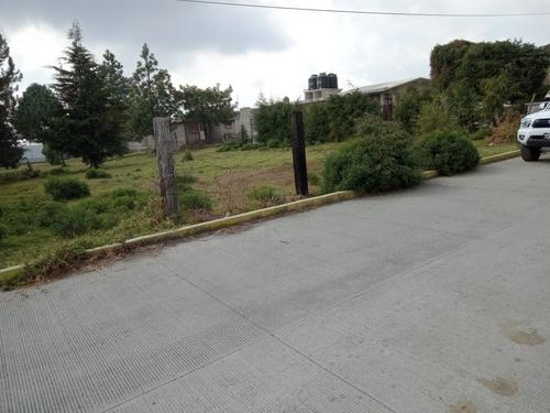Imagen 1 de 9 de Último  Calle Golondrina Tres Marias