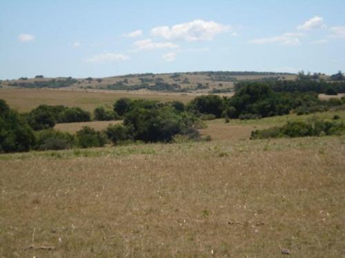 Campo En Venta En Garzón Rural