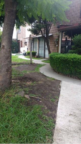 Casa En Renta Olivo, El Laurel