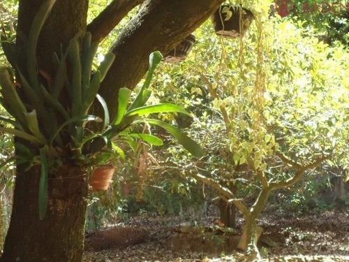 Chacara Residencial Em Campinas - Sp, Jardim Martinelli (sousas) - Ch00089