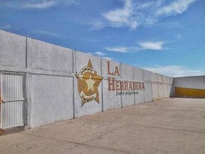 Local Comercial En Venta Ejido Jimenez
