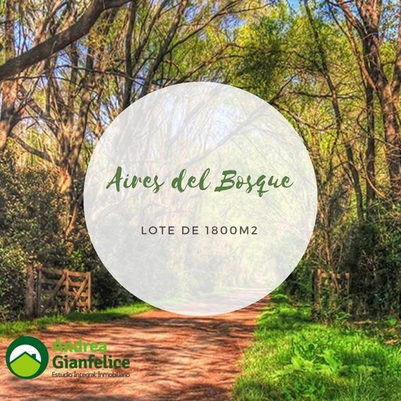 Venta Terrenos En Lobos Barrio Aires Del Bosque La Araucaria