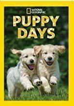 Puppy Days: Season 1 Da1