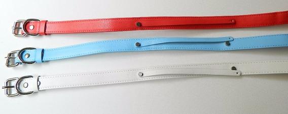 Kit Com 10 Coleiras Personalizar Pet Com 60 Cm