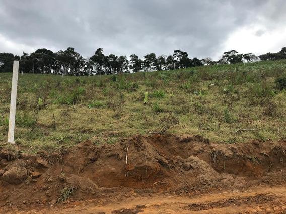 Lotes Para Construção De Sitio Para Quem Gosta Do Plantio Jd
