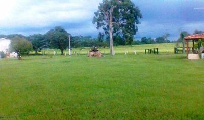 Fazenda Em Araguacema - To, P/ Pecuária - 153