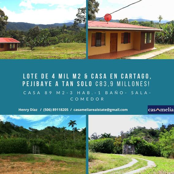 Venta Lote Y Casa Costa Rica, Cartago, Jimenez, Pejibaye