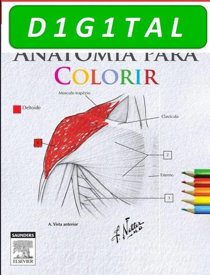 Netter - Anatomia Para Colorir.