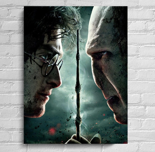 Quadro Harry Potter Impressão Em Tela De Pintura 30x40