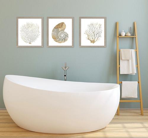 Imagen 1 de 9 de Tríptico Corales Y Caracol Canvas Y Marco Cuadro Decorativo