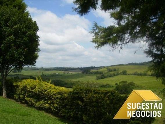 Fazenda Formada Direcionada Para Gado Linda - 2798
