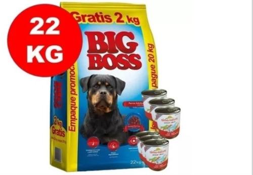 Imagen 1 de 3 de Big Boss 20kg +2kg+ Biscrock