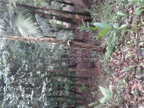 Imagem 1 de 2 de Terreno - Pastoril - Ref: 21172 - V-21172