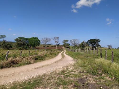 Rancho Ganadero De 194 Ha., En Tenosique Tabasco