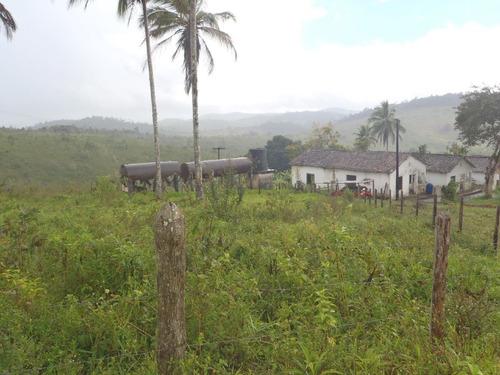 Vendo Fazenda Com 830 Hectares Na Região De Ibirapitanga/ba - 4456