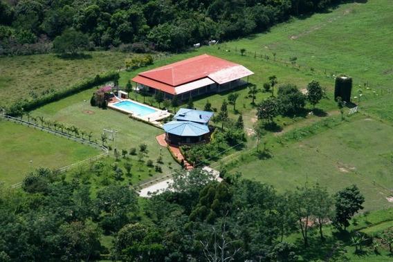 Sítio Com Casa E Piscina - 268-im259576