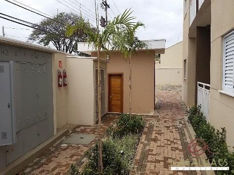 Apartamento - Ap00113 - 2397044