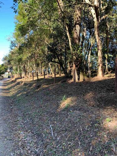Imagem 1 de 14 de Terreno Rural - Chacrinha - Bairro Passa Dois - Lapa/pr
