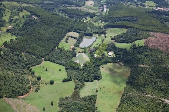 Fazenda Em Bragança Paulista Com 40 Alqueires - 740
