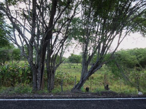 Venta De Rancho El Pucté En Campeche