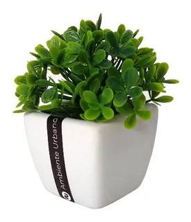 Planta Artificial Decoracion Maceta Cerámica Pasto Arbusto