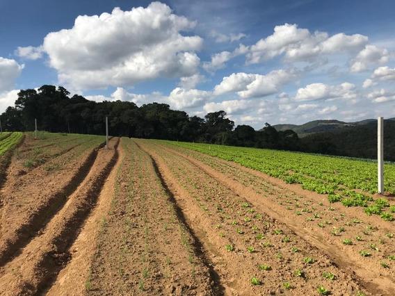 Terrenos De 600 M2 Com Area Verde E Toda Documentação J