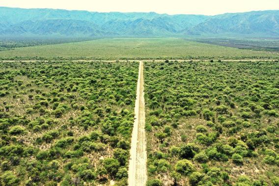 Campos En Venta - 449 Ha En Valle Viejo, Provincia De Catamarca - Sobre Ruta 33 Pavimentada